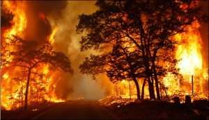 An opinion on natural disasters – Part 2